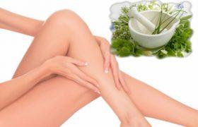 Действенные натуральные средства против венозного застоя и варикоза
