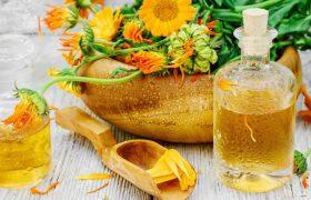 Лечебные свойства оливкового масла и календулы при варикозном расширении вен