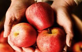 Назван дешевый фрукт, защищающий от болезней мозга