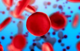 Названы главные причины образования тромбов