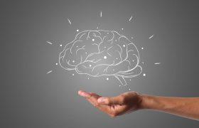 7 удивительных фактов о мозге человека