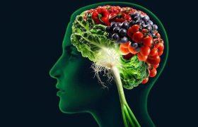 Важнейший источник питания для мозга