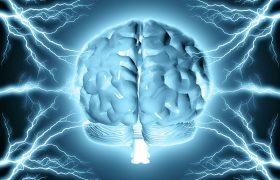 Топ-5 продуктов, улучшающих работу мозга