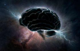 ТОП-10 продуктов, без которых ваш мозг будет тормозить