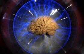 Мозг не отличает реальность и воображение: факты о мозге, которые нужно знать
