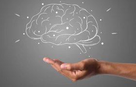 Три питательных вещества, в которых сильнее всего нуждается ваш мозг