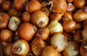 Диета для сосудов: 5 продуктов, которые помогут при высоком холестерине