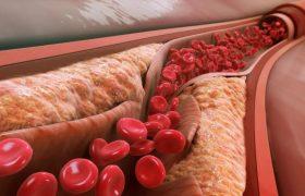 Питание против слабоумия: вот какие продукты можно использовать, чтобы отложить старение мозга