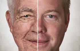 Ученые научились останавливать процесс старения клеток мозга