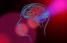 Ученые назвали 5 привычек, которые сводят к минимуму риск инсульта