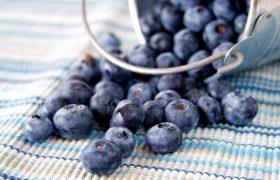 Названа ягода, полезная для работы мозга и сердца