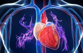 Кардиологи узнали, что на самом деле вызывает болезни сосудов