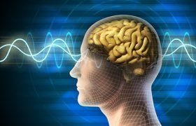 Неврологи нашли белок, стоящий за неприятными последствиями инсульта