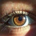 Развитие инсульта и деменции можно предсказать по состоянию глаз