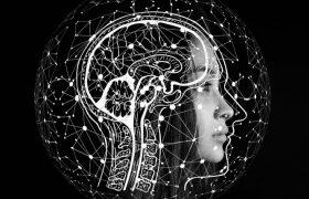 Привычки, способные улучшить работу мозга
