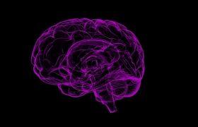 Головной мозг при болезни Альцгеймера могут повреждать частицы металлов