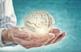 Стратегии, которые помогут сохранить здоровье мозга на годы