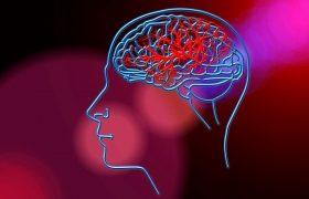 Ученые определили ключевой ген детского инсульта