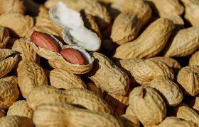 Ученые доказали пользу арахиса в противостоянии деменции